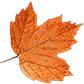Постоянная ссылка на Готовимся к приходу осени: создание падающих листьев с использованиемCSS