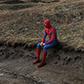 Постоянная ссылка на Проект Benoit Lapray о супергероях наприроде