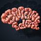 Постоянная ссылка на Реалистичный 3D-текст из мозгов в AdobePhotoshop