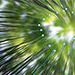 Постоянная ссылка на Используем эффекты размытия Blur в AdobePhotoshop