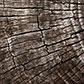 Постоянная ссылка на Природные текстуры для свежегодизайна