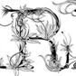 Постоянная ссылка на 18 типографическихдизайнов