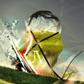 Постоянная ссылка на 20 вдохновляющих креативныхобоев