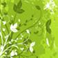 Постоянная ссылка на Коллекция векторных цветочных ресурсов дляИллюстратора