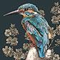 Постоянная ссылка на Птицы виллюстрациях