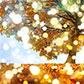 Постоянная ссылка на Применяем эффект боке к фотографиям в AdobePhotoshop