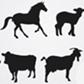 Постоянная ссылка на 20 наборов силуэтов животных ввекторе