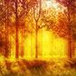 Постоянная ссылка на Как сделать изображение теплым в AdobePhotoshop
