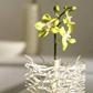 Постоянная ссылка на Креативные дизайны цветочныхваз