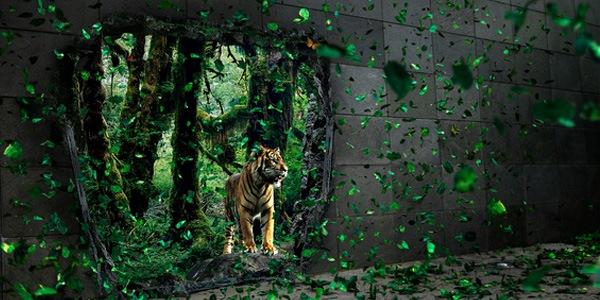 тигр из джунглей