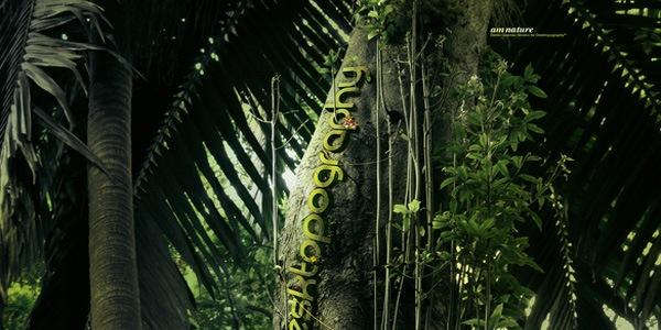 типографические джунгли