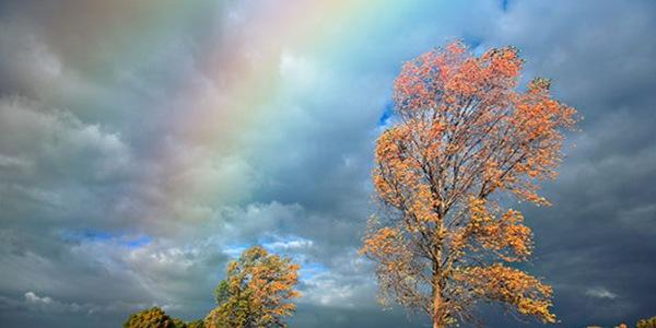 Добавьте реалистичную радугу к фотографиям