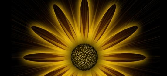 Цифровой цветок