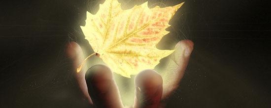 Осеннее падение