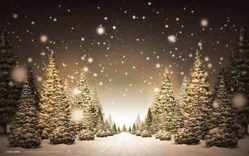 магия зимней ночи