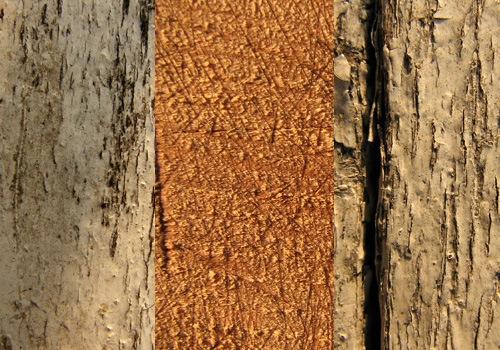 Набор текстур старого дерева