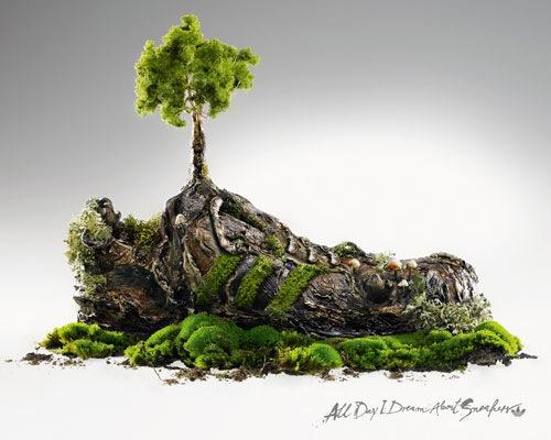 Adidas тапочки дерево