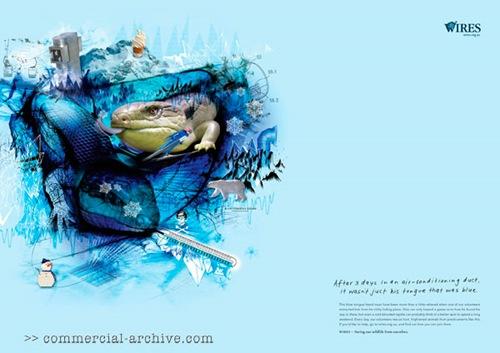 Социальная реклама WIRES Wildlife Rescue NSW для спасения дикой природы в Австралии