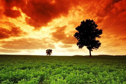 природа в хдр изображениях