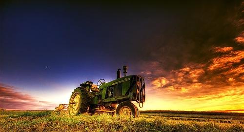 закат в поле хдр