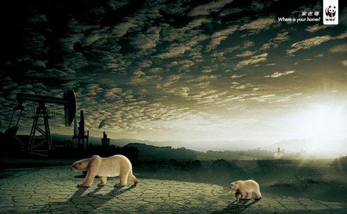 защита диких животных