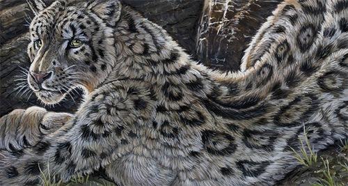цифровой леопард