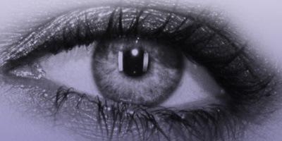 16 кистей-глаз