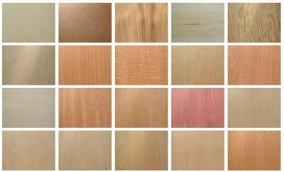45 текстур дерева
