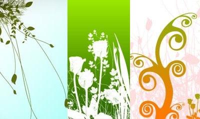 3 кисти цветов в высоком разрешении