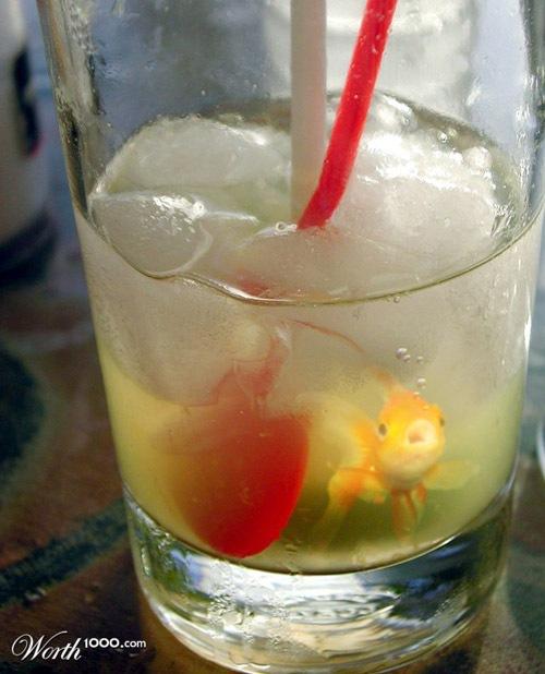 рыбный коктейль