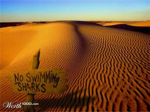 фотоманипуляция пустыни