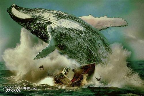 кит Моби Дик