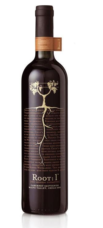 креативная винная бутылка
