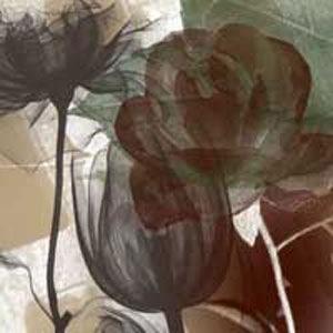 Кисти цветы для фотошопа