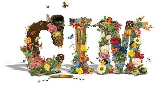 типографика в цветах