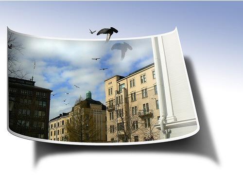 Летящие голуби
