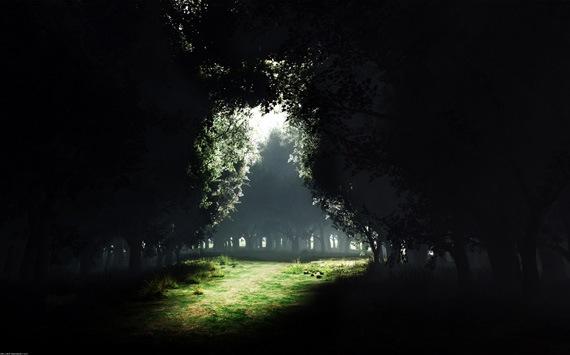 Тьма в свете