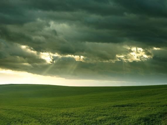 Дождливый день в солнечном июне