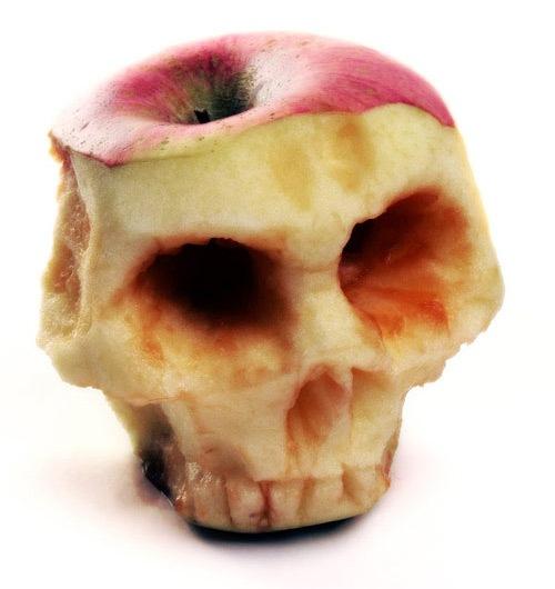 огрызок-череп