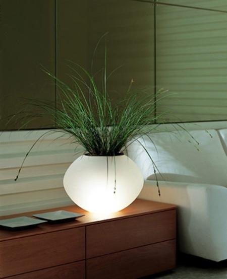 Ваза лампа в форме биосферы