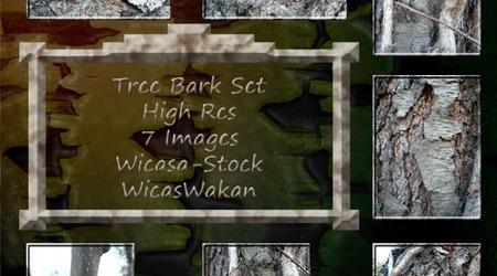 Стоковые текстуры деревянной коры