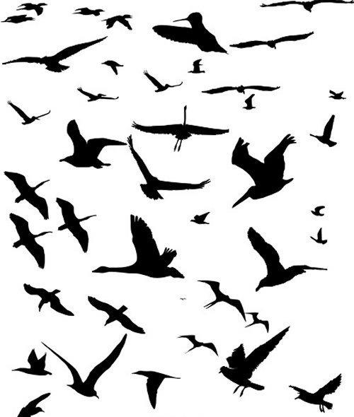 Летящие птицы