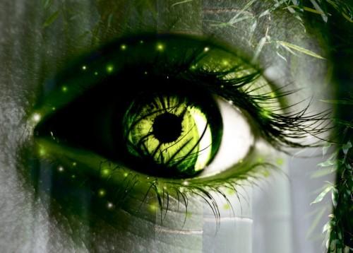 зеленые  глаза природы
