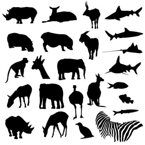 Животные зоопарков и тропиков