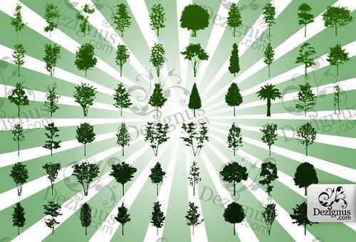 Векторные силуэты деревьев