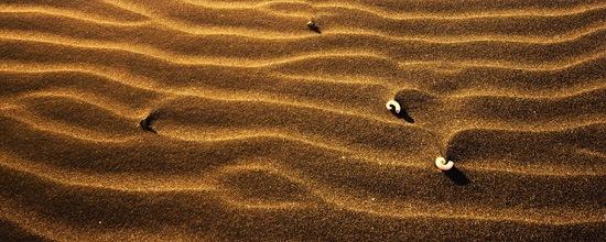 Песчаные обои