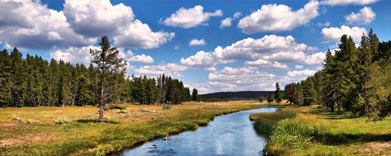 Река Гриззли