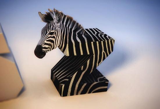 3D типографика в виде зебры