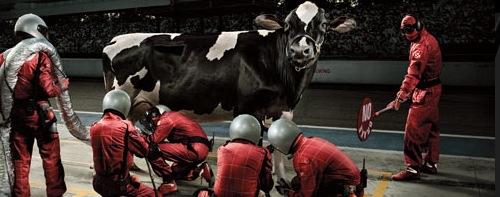 фотоманнипуляция с коровой