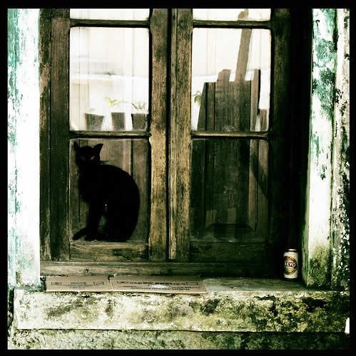 старое исцарапанное окно